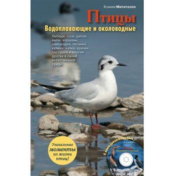 pticy-vodoplavayushhie-i-okolovodnye-cd